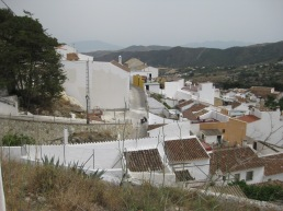Medianera norte