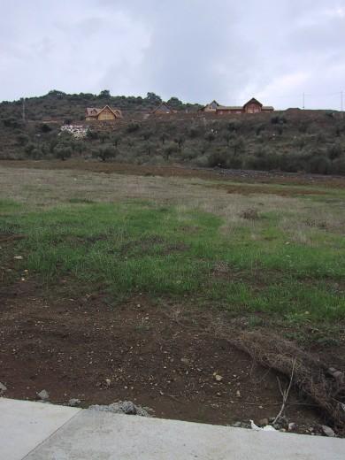 Vista de la parcela desde el vial de acceso