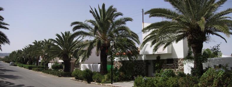 Panorámica de la calle Alondra